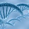 TEST GENETICI PER TROMBOFILIA